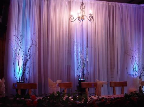Backdrop with tall willow branches.